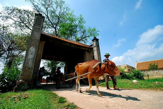 Dung Lam Ancient Village Vietnam