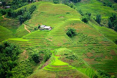 Ta Van Sapa Vietnam